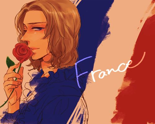 Nation's Flags France