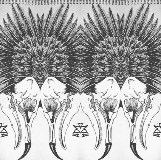 Crow / reflejo / Dibujos / plumas / Drawing