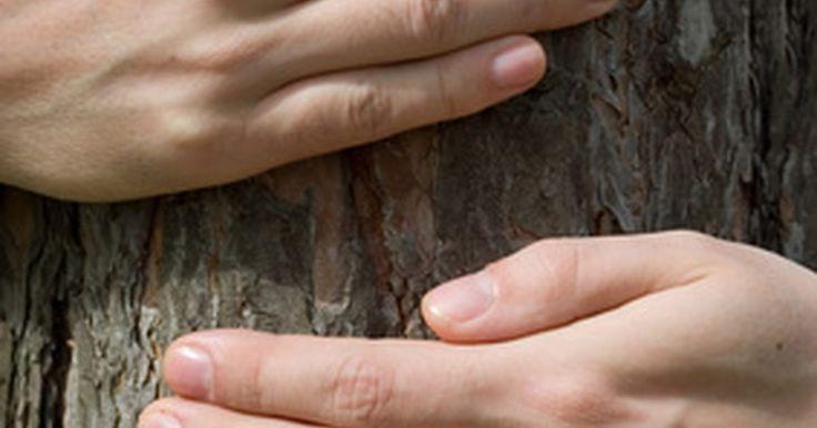 Una lista de los recursos naturales para los niños. Los recursos naturales son creados a partir de la naturaleza. Enseñar a los niños lo que son y la manera de protegerlos es importante porque muchos de ellos son esenciales para la vida, ayudan a hacernos sentir más cómodos o están siendo contaminados, dañados o son de suministro limitado.