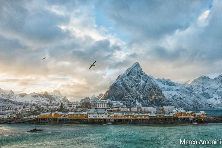 Reine by Marco Antonini on 500px