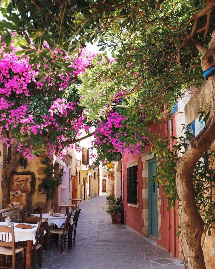 """@emmaskystalker.photography no Instagram: """"These trees are yours because you once looked at them.  These streets are yours because you once…""""  #photography #travel #picoftheday #architecture #photographer #photo #instadaily #city #igers #instagram #canon #places_wow  #streets #crete #flowers"""