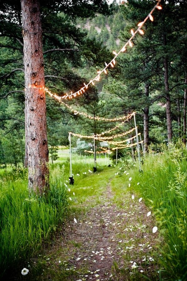 Lights stringed between trees to create the path to the ceremony