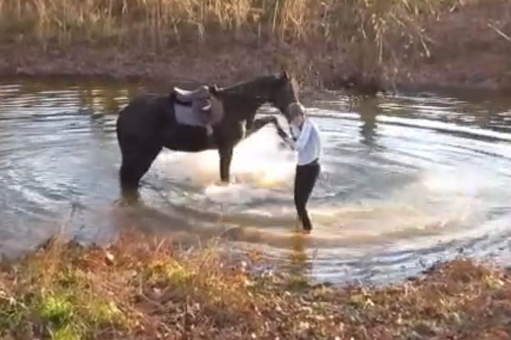 Wie viele Pferde reagiert auch Magic vorsichtig, als seine Besitzerin Anna Paterek mit ihm an einen Fluss heranreitet. Auch als sie dem Tier ...