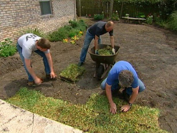 How To Remove Old Sod And Lay New Sod Farms Tips And