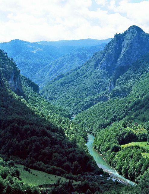 Canyon of the river Tara - Montenegro