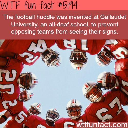The football huddle - WTF fun facts