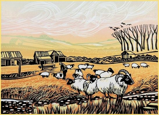 Looking After the Sheep, Rob Barnes
