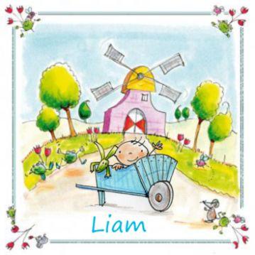Hollands geboortekaartje met molen en baby jongen in kruiwagen in hollandse stijl.