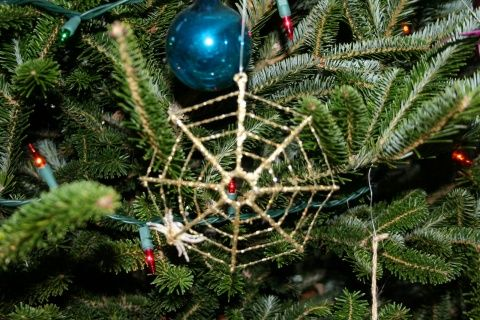 Christmas Traditions: In the Ukraine it's considered good luck if a spider appears on your Christmas tree. This stems from a folk tale about an old woman too poor to afford ornaments, who found that spiders had inhabited her tree overnight and decorated its branches with their webs. If you wake to a spider on your tree on Christmas morning you'll be blessed with good fortune. Click for more traditions from around the world.