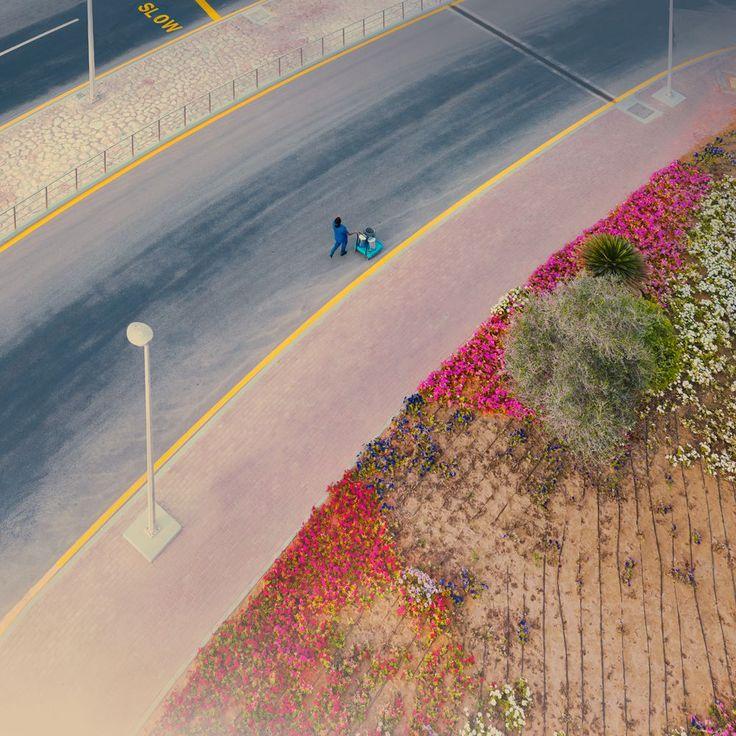 Landscape by Agnieszka Doroszewciz #landscape #pastel #minimalism #photography