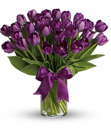 the  best purple tulips ideas on   tulip, pretty, Natural flower