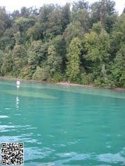 Kristallklares Wasser im Bodensee