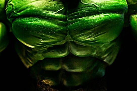 The man himself : Hulk