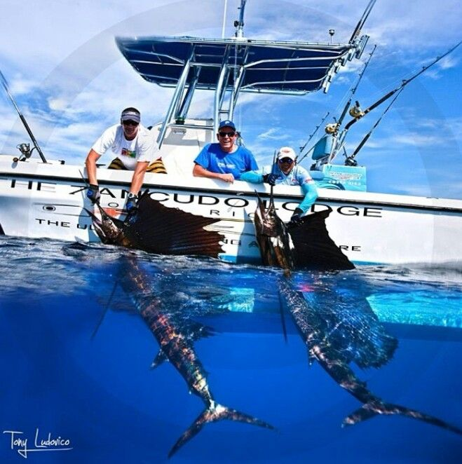 93 best big game fishing images on pinterest fishing for Ocean fishing boats