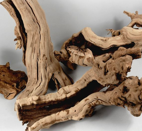 "Driftwood - Natural Grapewood Branches  (12-14"")  Hollow & Sandblasted    $12 each / 4 for $11 each"