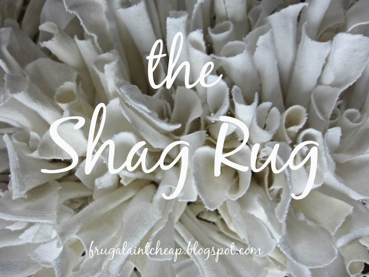 Frugal Ain't Cheap: Shag Rug (with recycled material) with turquoise and black