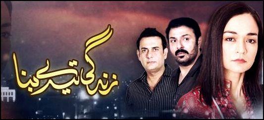 Best Pakistani dramas 2014 of HUM TV