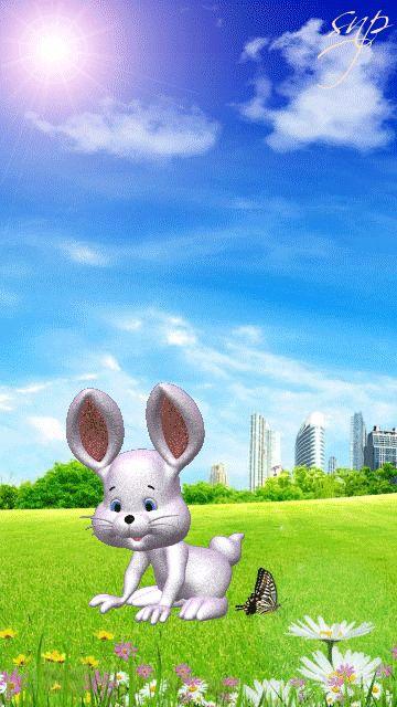 красоте движущиеся картинки с кроликами подойдут