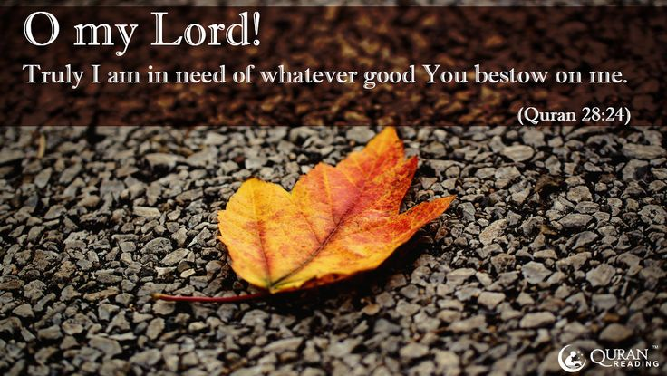 """O my Lord! I am in need of whatever good you send me."" (Quran 28:24)"