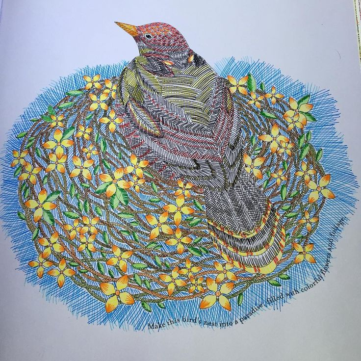 Crosshatching Bird From Tropical World Coloring Book Tropicalwonderland Tropicalworld Stabilo Stabilobrasil