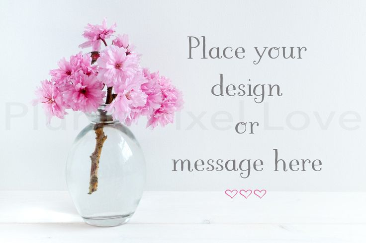 Styled Stock Photography mock up, instagram, Overlay text, Digital Image,  business promotion, vase with blossom, copy space, feminine SSP70 by plumspixellove on Etsy