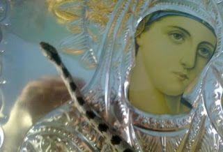 Η   ΕΦΗΜΕΡΙΔΑ   ΤΩΝ    ΣΚΥΛΩΝ: Η Παναγία με τα φιδάκια...