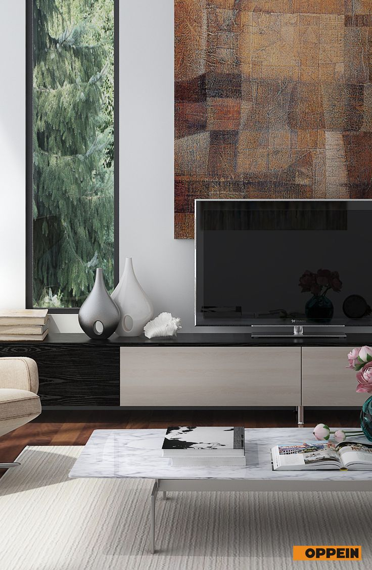 Long TV Stands Here Can Maximize Your Living Room All Books And Beautiful Artwares