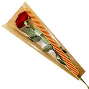 Bolsa Senyera CLASIC-50 con fondo KRAFT 6x18x48  1000 unidades.  BOLSAS PARA SANT JORDI, bolsa cono para la rosa se Sant Jordi, bolsas con bandera catalana, bolsa con Senyera per la rosa, bolsas con bandera andorrana, cono para la diada, bolsas de celofan para flores, bolsa para Sant Jordi personalizadas. BOLSAS PARA LA ROSA DE SANT JORDI AL MEJOR PRECIO
