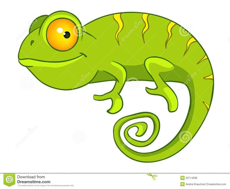 9 Best Images About CAMALEON On Pinterest Green Artworks And Colors
