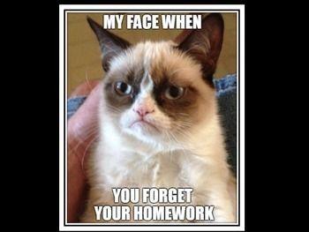 Classroom Meme Posters By The Zebra Teacher Teachers Pay Teachers Funny Grumpy Cat Memes Grumpy Cat Grumpy Cat Meme