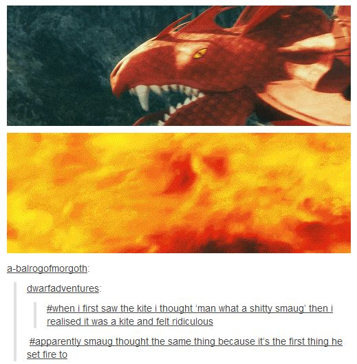 Apparently Smaug thought the same thing because it's the first thing he set fire to.