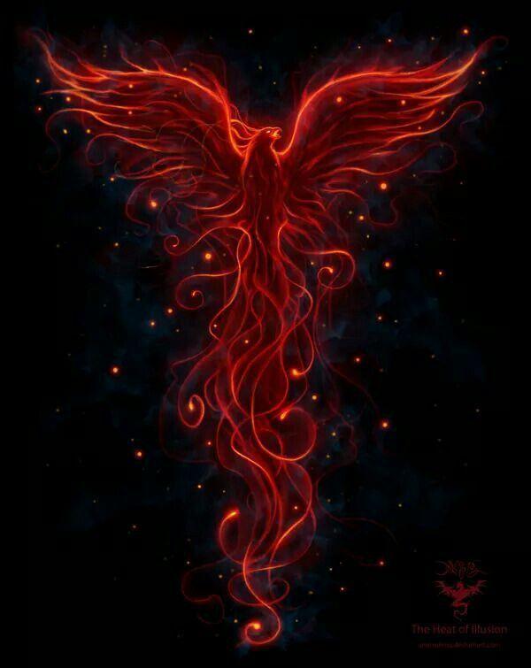 #Phoenix: #Scorpio #Pheonix http://ift.tt/2Co0aZ4