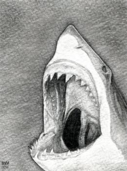 how to draw a shark head..this has been a request from both boys and girls..check out charcoal artist Robert Longo for inspiration