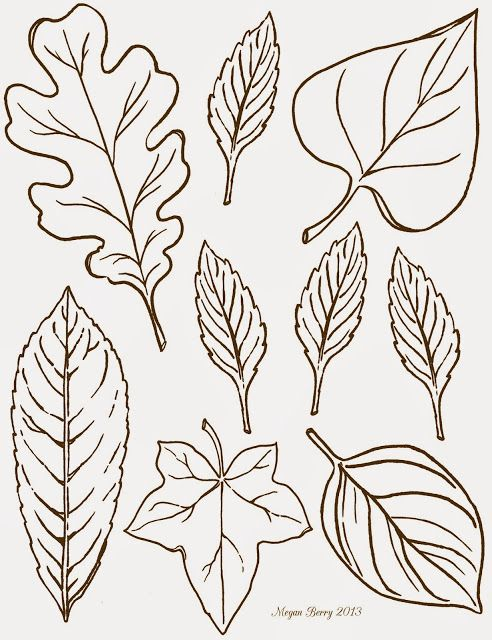 Thanksgiving: Leaf Clip Art Printables from Lilac & Lavender...Could use on our thankfulness tree!
