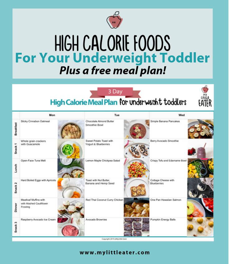 High Calorie Foods To Help Your Underweight Toddler | High ...