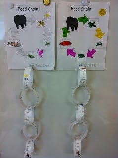 Primary ESOL: Food Chain