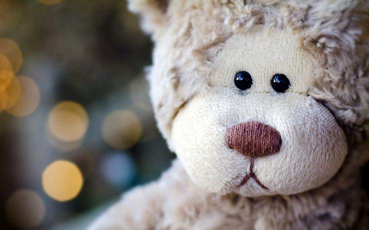 Teddy Bear | Ayıcık