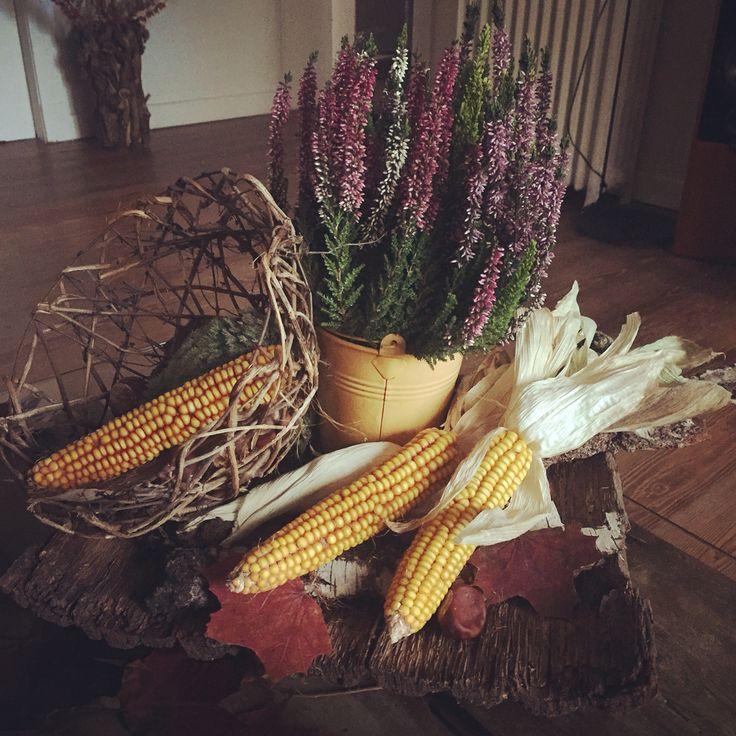 DIY Herbstdeko aus selbst gesammelten Mais, Blättern und Holz. Als Herbstpflanze finde ich Erika sehr schön :)