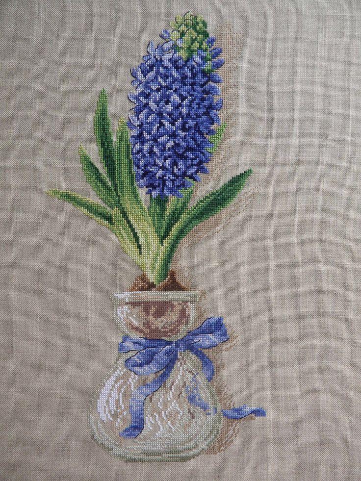 le mie piccole croci: Belle jacinthe (Veronique Enginger)