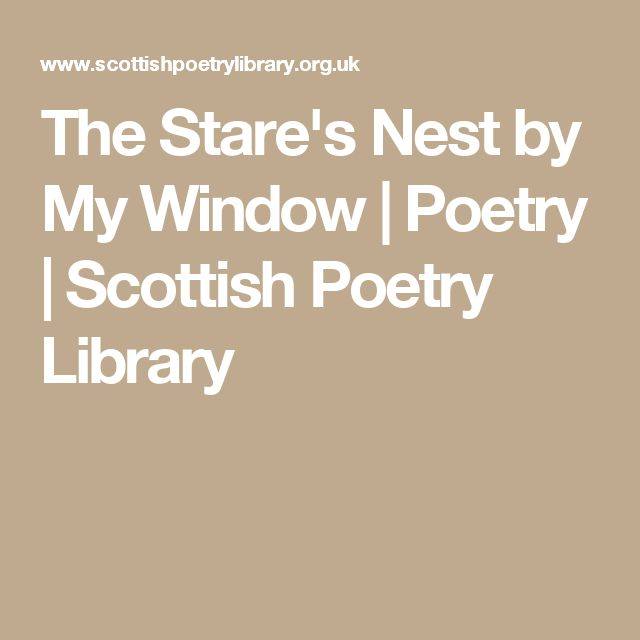 The Stare's Nest by My Window | Poetry | Scottish Poetry Library