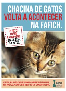"""""""O GRITO DO BICHO"""": 16 gatos são mortos na UFMG e filhote tem tripas a..."""
