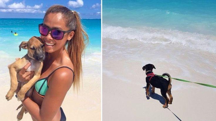 Una isla llena de perros que hace parte de Islas Turcas y Caicos, un paraíso donde además de ir de vacaciones, pasas el rato con perros