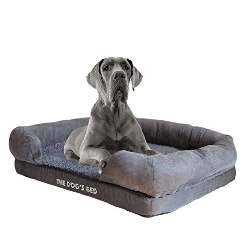 184 Best Dog Beds That Look Like Furniture Images On