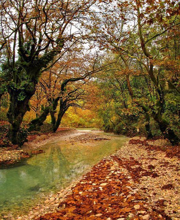Zaloggitikos river in Autumn, #Epirus #Greece, #travelingreece
