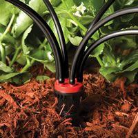Rain Bird Drip Irrigation 6-Outlet Manifold