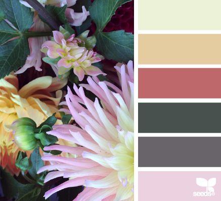 flora hues #eef2d7 #e6cba1 #bf696a #48524d #696469 #edd0e1