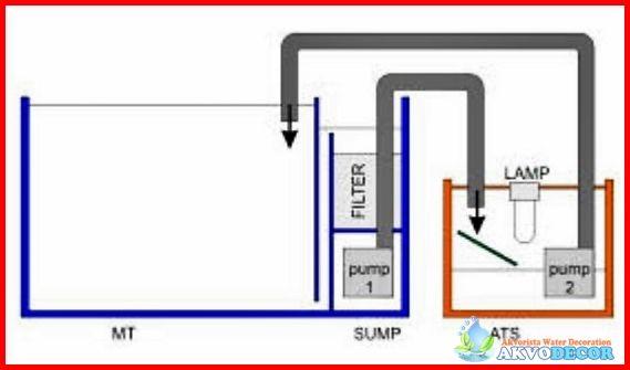 Membuat Filter Akuarium Air Laut   Akuarium adalah hobi terkini bagi beberapa kalangan pecinta ikan hias, namun tak banyak yang sering mengeluhkan cara membuat filter akuarium air laut yang baik agar tidak perlu mengganti air tiap minggunya. Kegiatan mengganti dan menguras air akuarium ini sangat membosankan dan tentunya membuang – buang waktu...  Selengkapnya: http://akvodecor.com/membuat-filter-akuarium-air-laut-yang-mudah/