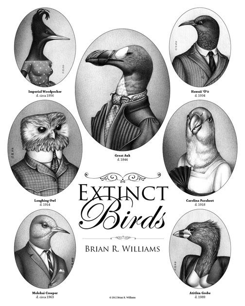 Extinct birds, drawn wearing the clothing of the era when they were declared extinct. A bit of clever art by Brian R. Williams.