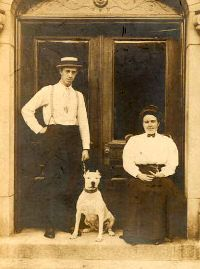 In the beginning of 20th century the American Pit Bull Terrier was the most popular family dog.