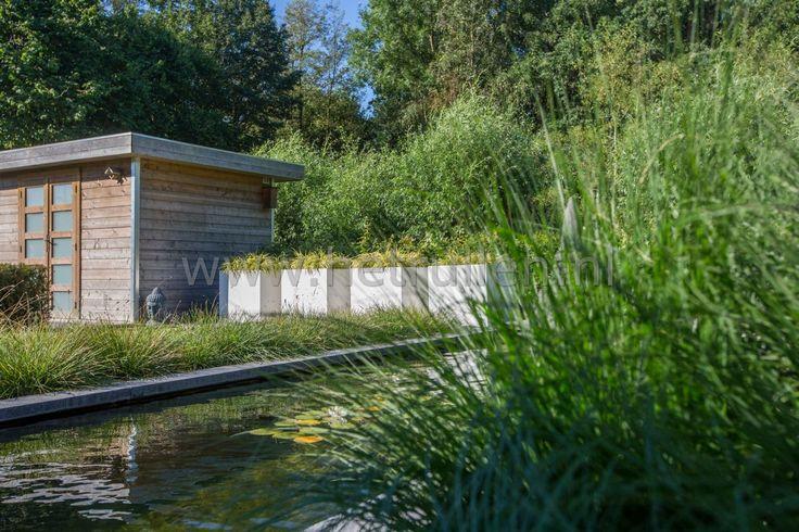 Strakke vijver met siergrassen en moderne witte bloembakken Tuinontwerp tuinaanleg Eindhoven Helmond